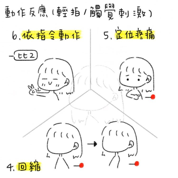 運動反應(M, Motor response)